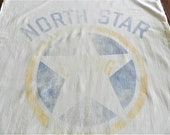 North Star Laying Mash Sack, Grain Sack, General Mills, Fitchburg, Farm Service Company, Primitive