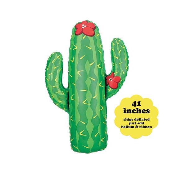 Cactus Balloon 41