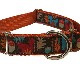 "1"" Squirrel Large Dog Collar 