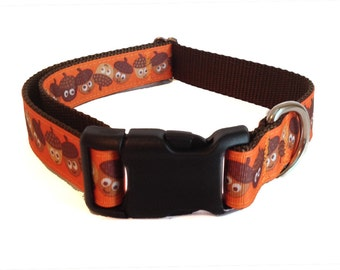 "1"" Acorn Large Dog Collar 
