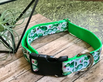 """1"""" Cactus Large Dog Collar 