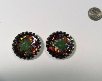 Succulent bottle cap magnet set