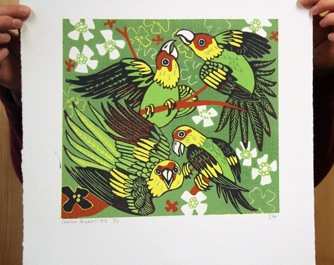 """Carolina Parakeet"" original woodcut"