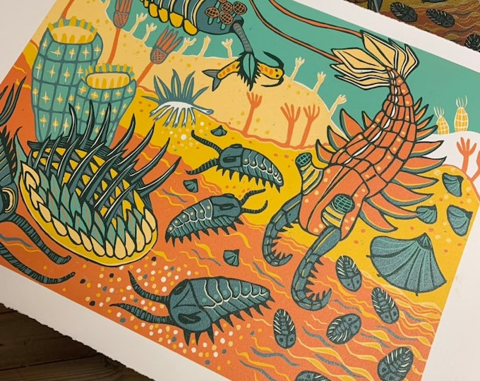 Cambrian Reef woodcut, original art by Jenny Pope