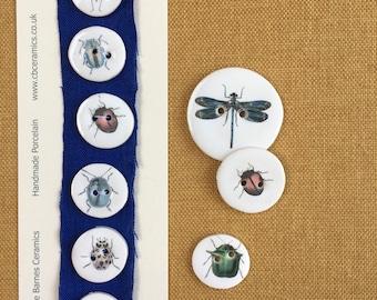 Set of 6 Porcelain bug buttons