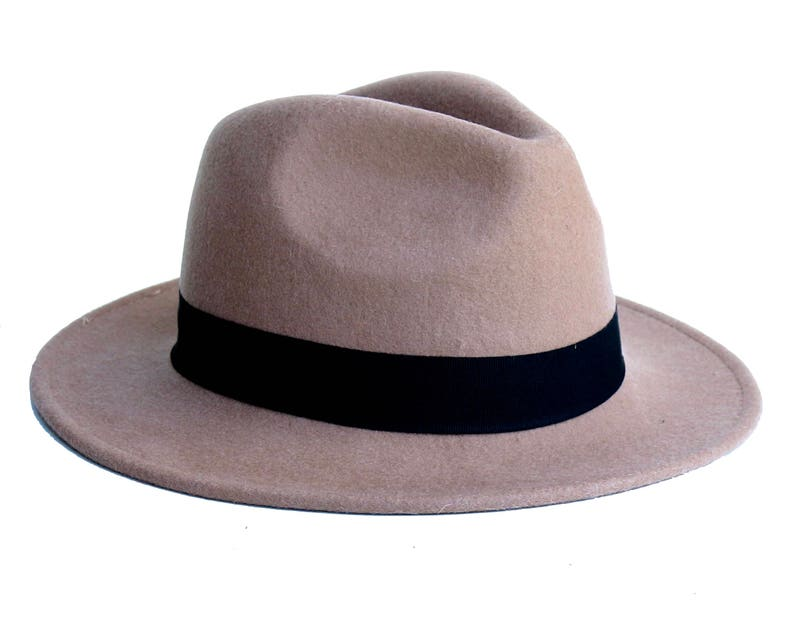 e68cee48f16 Fedora Trilby Hat Women s Hat Winter Accessory Wool
