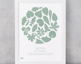 Beautiful designs lovingly made in england by boldandnoble plant leaf types illustrated art print garden lovers home gifts leaf shapes art print leaf facts art print plant and leaves wall art gumiabroncs Image collections