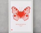 Butterfly Print, British Butterflies, Small Peacock Screen Print, Nature Wall Art, Butterfly Wall Art, Butterfly Decor