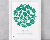 Plant 'Leaf Types' Illustrated Art Print, Garden Lovers, Home Gifts, Leaf Shapes Art Print, Leaf Facts Art Print, Plant And Leaves Wall Art