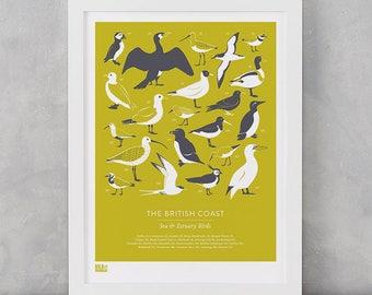 Bird Print, British Coast Birds Screen Print, Birds Art Print, Birds Wall Decor, Nature Wall Print, British Coast Screen Print