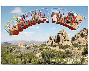 Joshua Tree Postcard