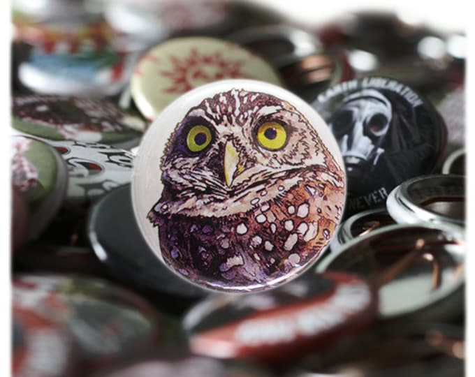 Burrowing Owl 1 inch Button or Magnet - Ships Free