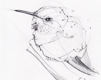 Round Hummer - Original Drawing