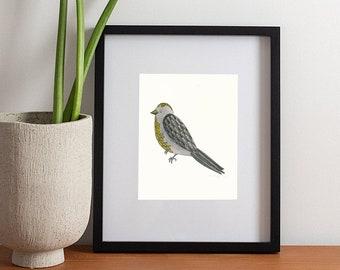 Original Bird Watercolor