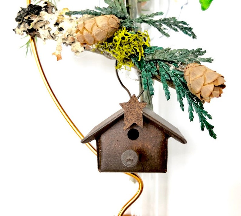 Bird House Rusty 6 inch Suction Glass Bud and Rooter Vase Gift image 0