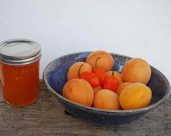 Apricot Habanero Jam Hot Pepper Homemade