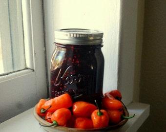 jam Blackberry Habanero  Farmers Market  16 oz Hot Pepper Party Appetizer