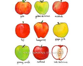 Apple kitchen art 8x10 Food art print