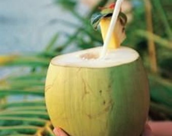Green Coconut, Lush Type