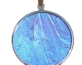 Blue Morpho Butterfly Large Round Pendant