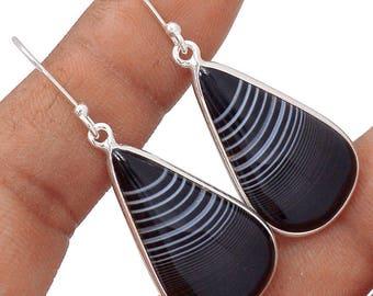 Botswana Agate Black Teardrop Earrings
