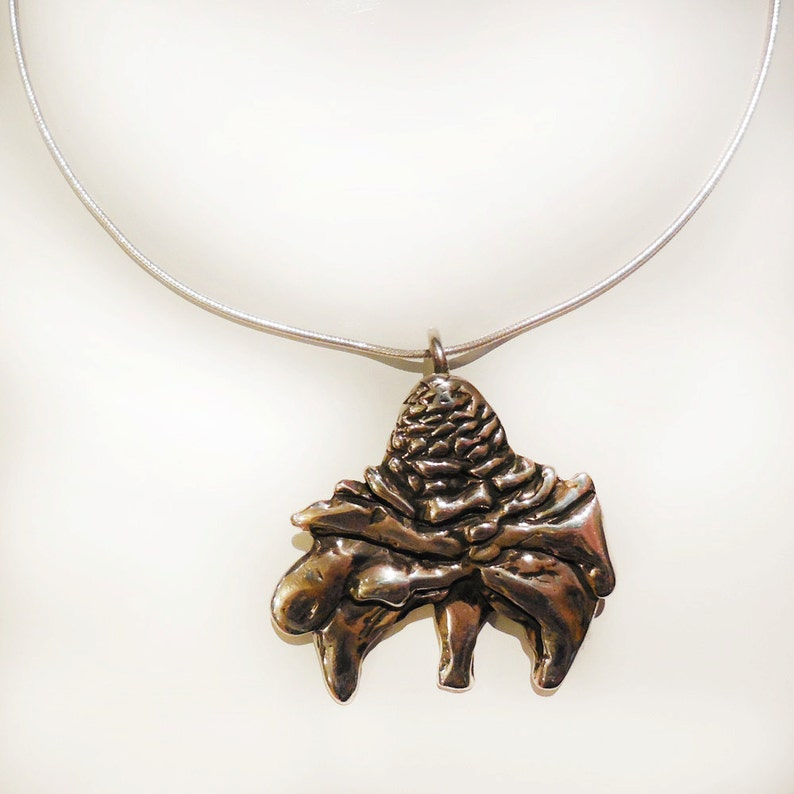 Torch Ginger Sterling Silver Necklace image 0