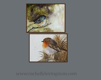 Set of bird paintings.  Set of small bird Prints. Set of watercolor bird paintings. Painting of vireo Robin. Bird decor Bird picture for her