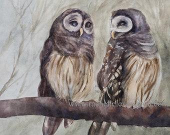 Watercolor Painting of owl Art Print of owl PAINTING Owl halloween art print Large  nursery owl.  barred hoot Barn owl painting. YOU PICK