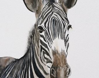 zebra PRINT of zebra nursery print zebra nursery art zebra room decor african wall hanging Watercolor painting boy girl nuetral dp