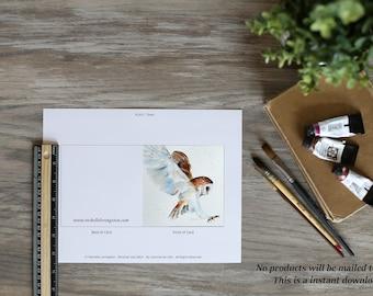 Flying Barn Owl Card. PRINTABLE owl card. Instant DOWNLOAD of owl card. Digital download owl card. Watercolor. SQUARE card. Envelope