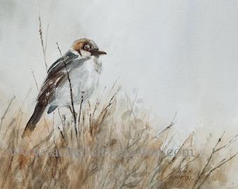 INSTANT DOWNLOAD bird painting in watercolor