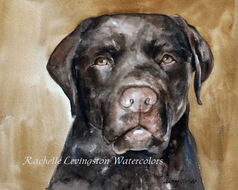 Chocolate lab card.Chocolate lab puppy card set.Mom gift for her.Dog card stationery set.NOTE CARDS of chocolate Lab Puppy notecard for him