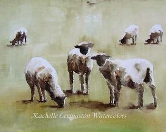 Painting of lambs in Watercolor. Sheep art print. Painting of sheep in pasture. Watercolor painting of lambs
