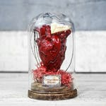 Heart in Bell Jar, Anatomical Human Heart in Glass Domes, Unusual Romantic Heart Gift, Heart Diorama Decor, Goth Anatomical Heart Terrarium