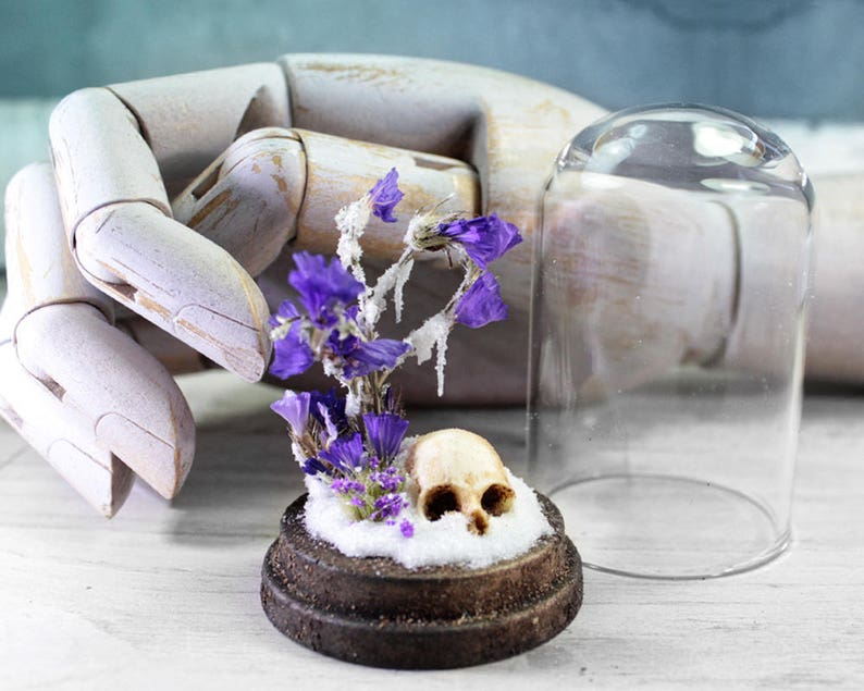 Skull Dried Flowers and Snow in a Bell Jar  Glass Miniature  image 0