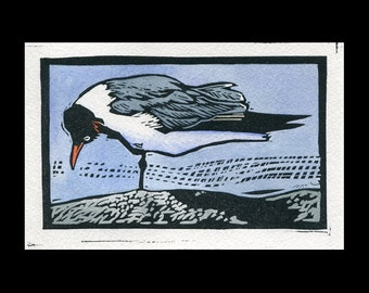 Laughing Gull hand painted linocut (A)