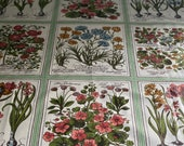Vintage 1980s Flower Folio Fabric, Botanical Fabric, Vintage Floral Botanical Fabric,
