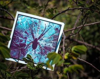 Blank Greeting Card - Spider mosaic
