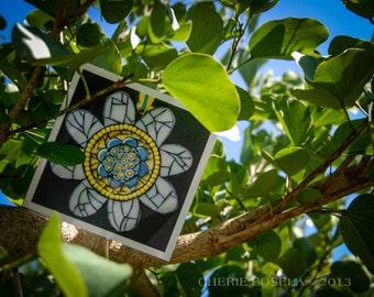 Blank Greeting Card - Daisy Flower mosaic