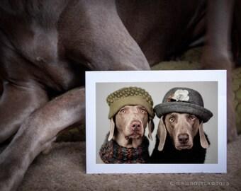 Best Friends - Weimaraner Greeting Card - Blank