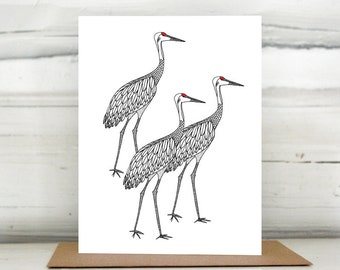 Sandhill Cranes illustrated greeting card