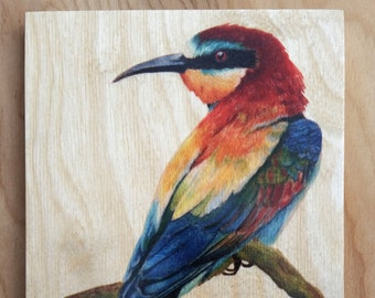 European Bee - Eater : Hand-Embellished Print on Wood