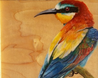 European Bee - Eater : Original Artwork Drawing on Wood