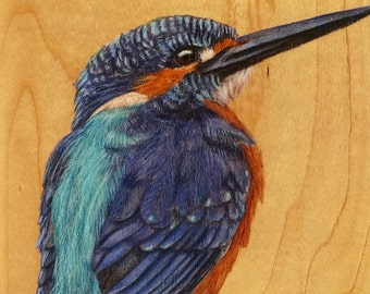Kingfisher : Original Artwork Drawing on Wood