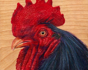 Black and Red Rooster Drawing, Original Art on Wood