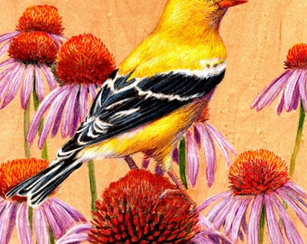 Goldfinch : Original Artwork Drawing on Wood