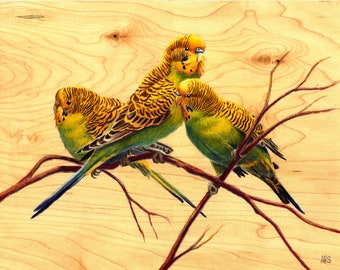 Parakeets: Original Artwork Drawing on Wood