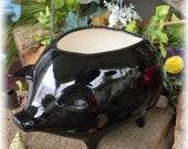 Pig Planter Ceramic Glazed from a Vintage mold design BLACK Hog Fat Boy Biker piggie Flower container