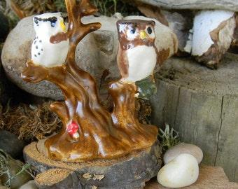 Owl Miniature in  Tree Top  Fairy Garden decor ..ceramic terrarium decoration All white or detailed in glaze
