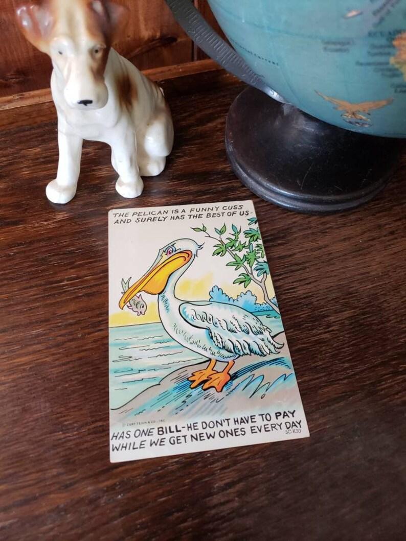 Vintage Pelican Postcard Cartoon Joke Rhyme Drawing | Etsy
